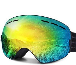 Fylina Snowboard Goggles